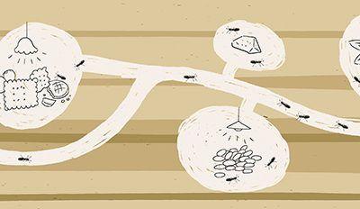 El coworking como epicentro de cambio social